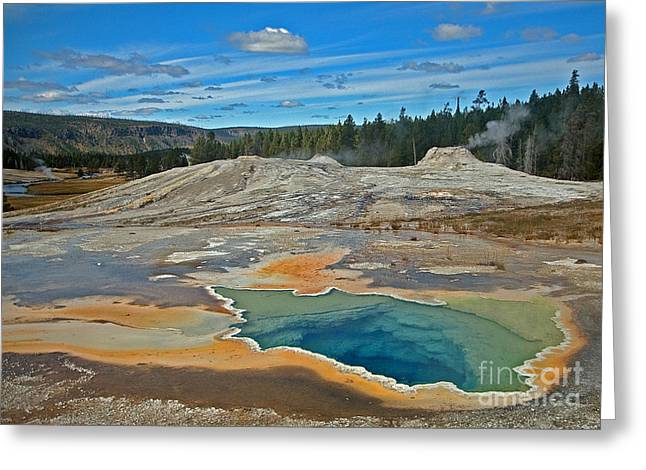 Hot Spring Greeting Card by Robert Pilkington