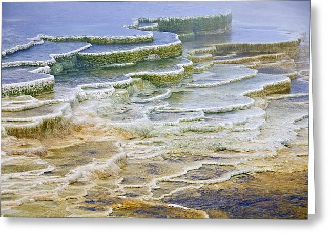 Greeting Card featuring the photograph Hot Springs Runoff by Gary Lengyel