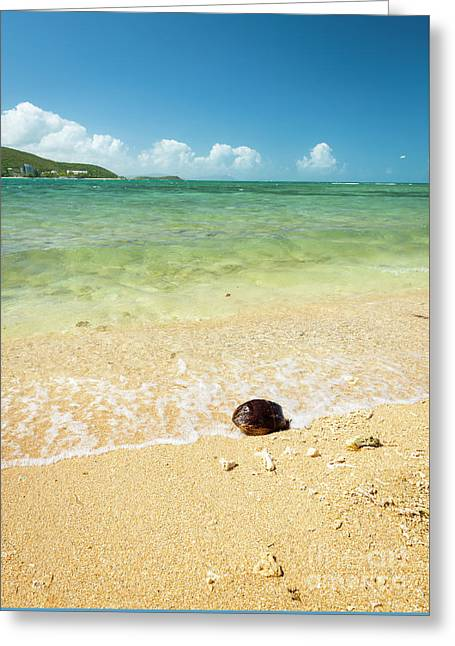 Hot Summer Beach Greeting Card by Tim Hester