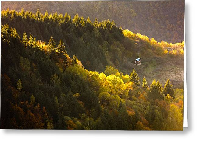 House By The Golden Wood Greeting Card by Evgeni Dinev