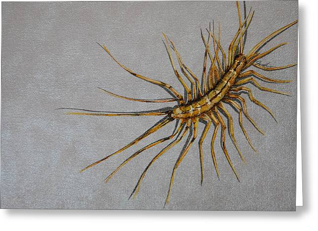 House Centipede Greeting Card