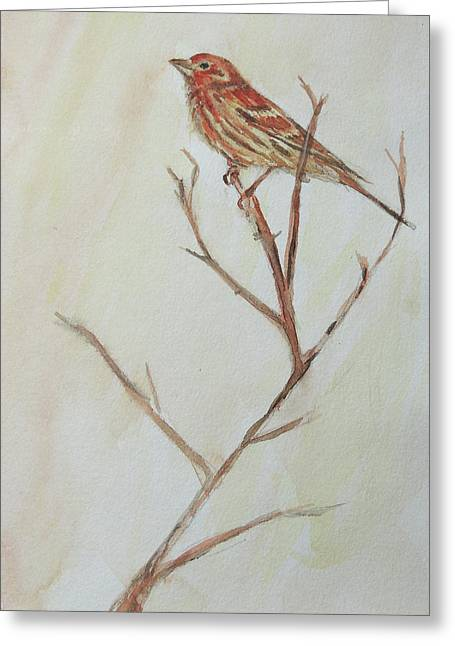 Greeting Card featuring the painting House Finch  by Kara Evelyn-McNeil