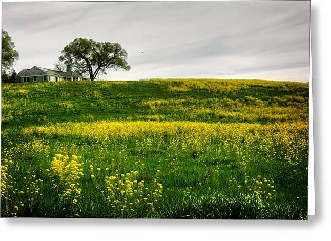 House On The Hill Greeting Card by Greg Mimbs