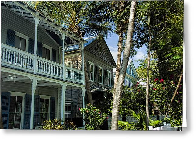 Houses In The Palms  Greeting Card by Dale Wilson