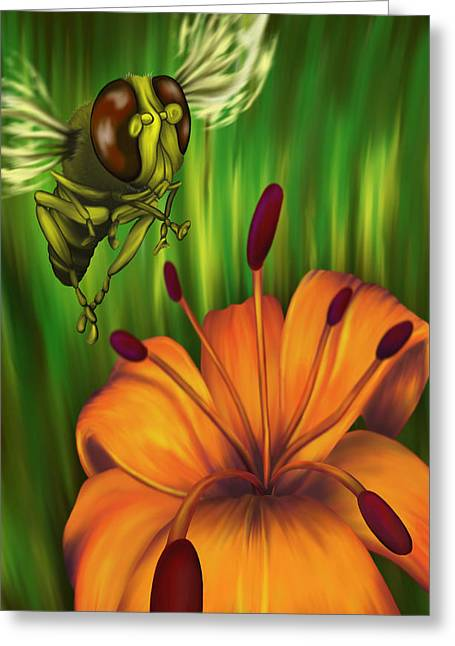 Hover Fly Greeting Card by Tom Wrenn