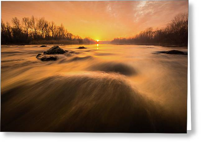 Hovering Over The River Greeting Card by Davorin Mance