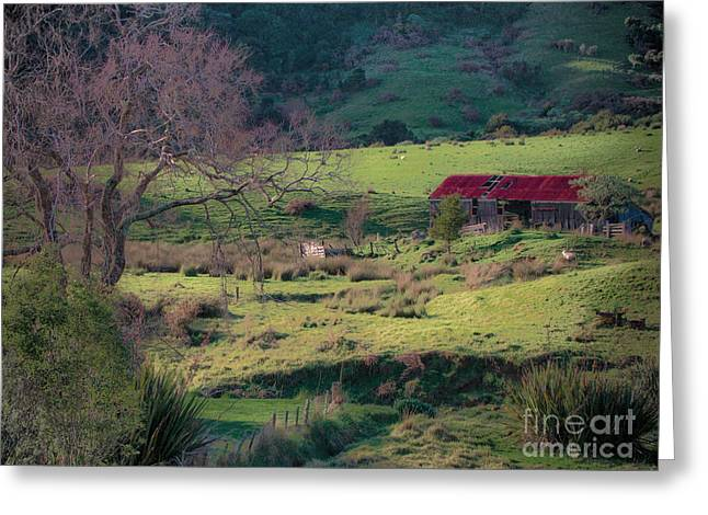 How Green Is My Valley Greeting Card by Karen Lewis