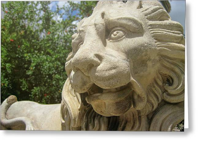 How Loud Is A Lion Greeting Card by JAMART Photography