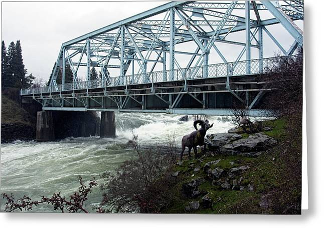 Howard St Bridge - Peak Spring Flow - Spokane Greeting Card by Daniel Hagerman
