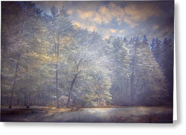 Howe State Park In Winter Greeting Card