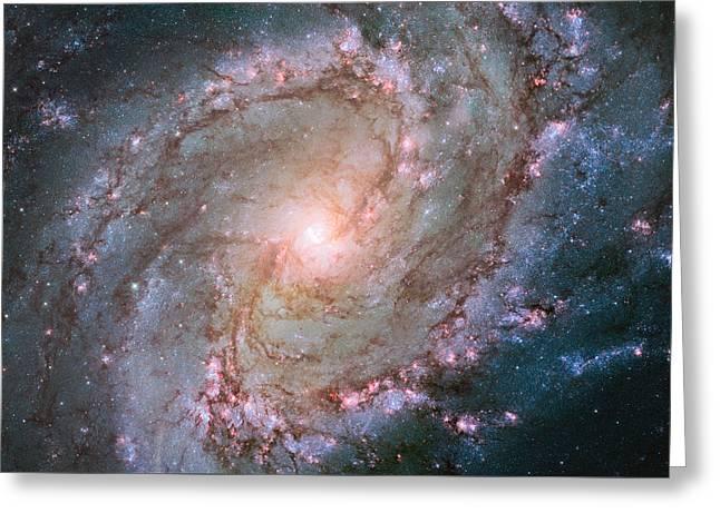 Hubble Views Stellar Genesis In The Southern Pinwheel Galaxy Greeting Card