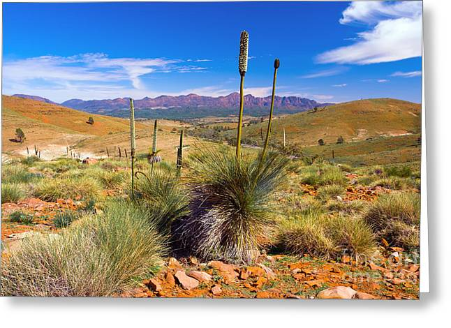 Hucks Lookout Greeting Card by Bill  Robinson
