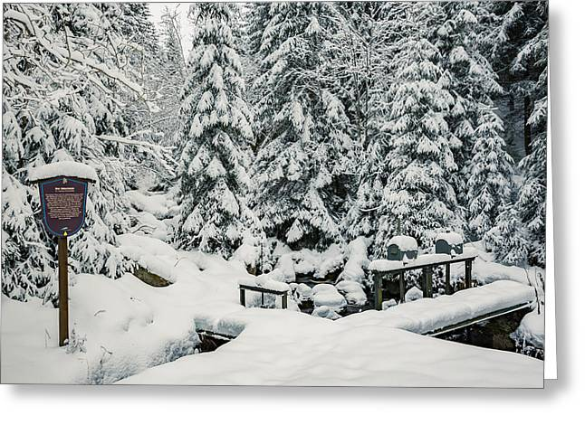 Huehnerbruehe, Harz Greeting Card by Andreas Levi