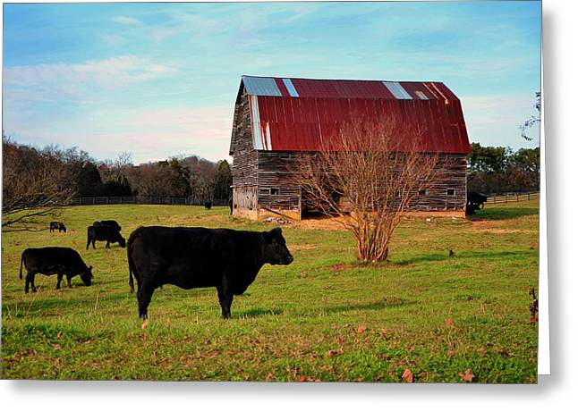 Huffacker Farm Greeting Card by Paul Mashburn