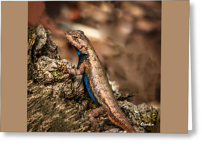 Greeting Card featuring the photograph Hugo The Lizard by Claudia Abbott