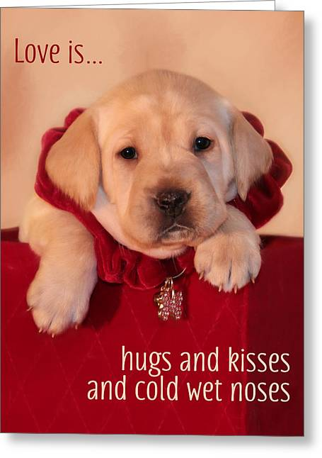 Hugs And Kisses Greeting Card by Lori Deiter