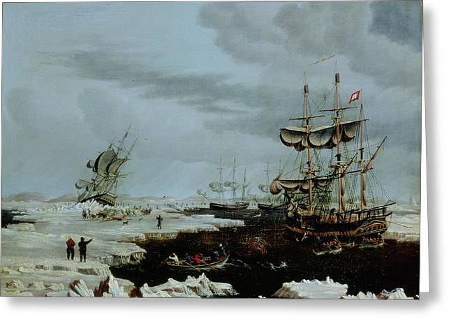 Wasteland Greeting Cards - Hull Whalers in the Arctic  Greeting Card by Thomas A Binks