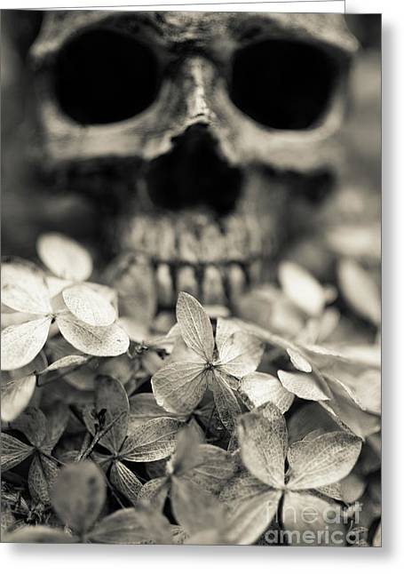 Greeting Card featuring the photograph Human Skull Among Flowers by Edward Fielding