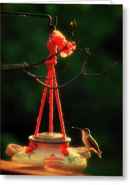 Humming Bird At Sunrise 03 Vertical Greeting Card