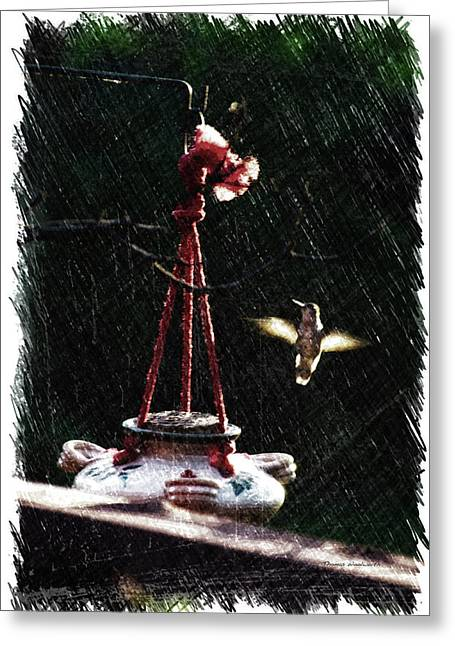 Humming Bird At Sunrise Pa Greeting Card