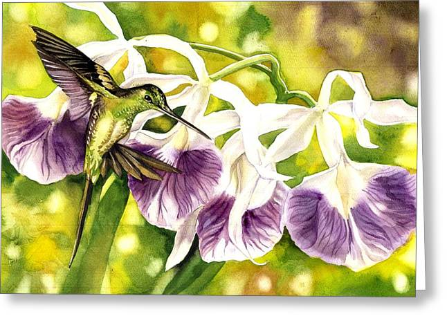 Humming Bird With Orchids Greeting Card
