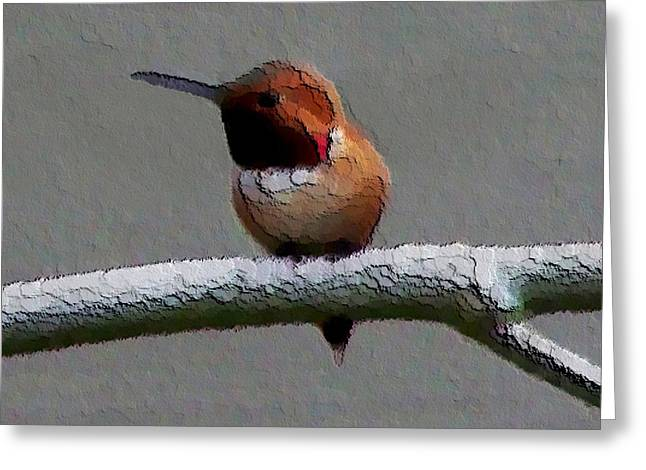 Greeting Card featuring the photograph Hummingbird - Embossed by Erica Hanel