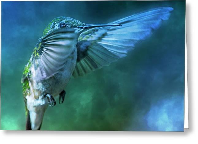 Hummingbird A Whisper In The Fog  Greeting Card