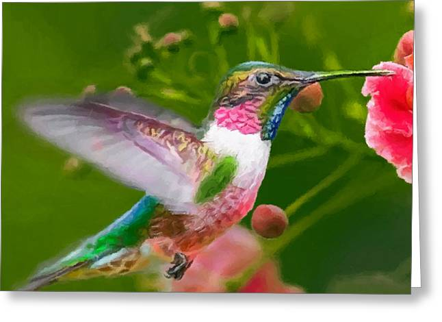 Hummingbird And Flower Painting Greeting Card by Dr Bob Johnston