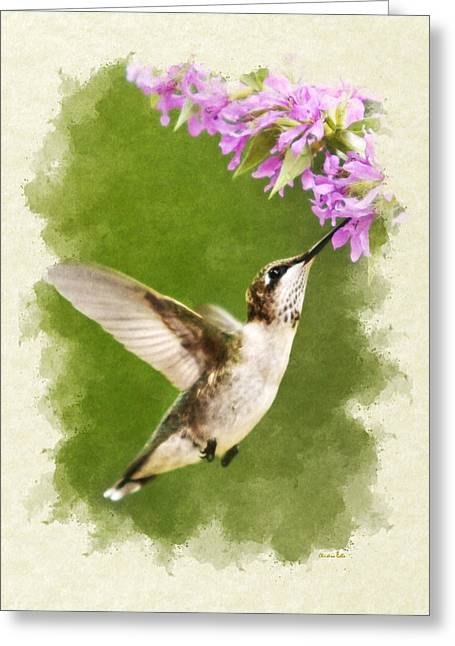 Hummingbird And Flowers Blank Note Card Greeting Card