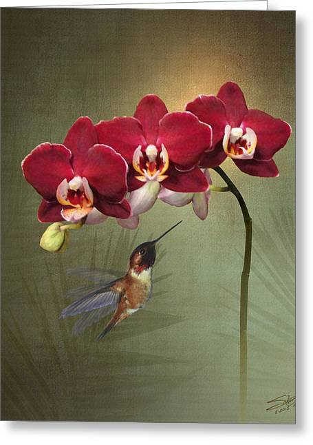 Hummingbird And Three Crimson Orchid Blossoms Greeting Card by IM Spadecaller