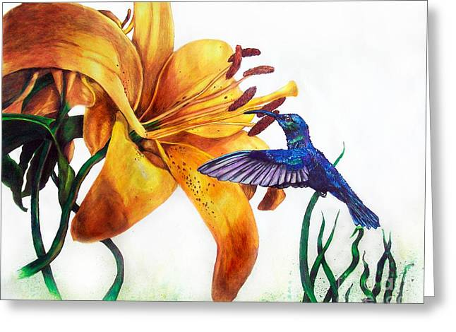 Hummingbird And Yellow Flower Greeting Card