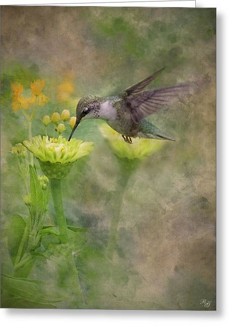 Hummingbird Art Greeting Card by Ron Grafe