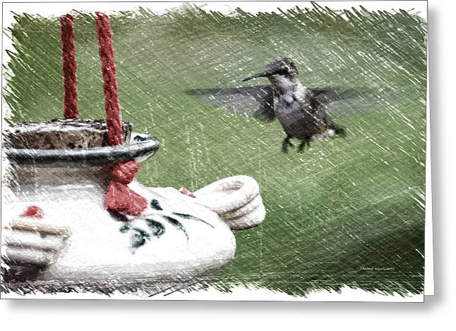 Hummingbird At The Feeder Pa 01 Greeting Card