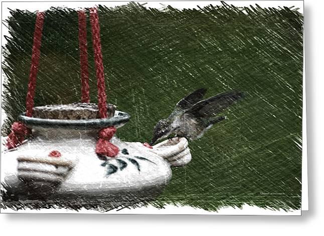 Hummingbird At The Feeder Pa 02 Greeting Card