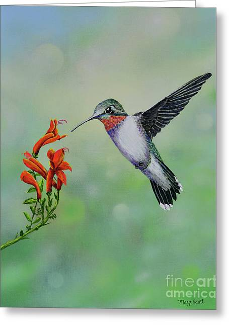 Greeting Card featuring the painting Hummingbird Beauty by Mary Scott