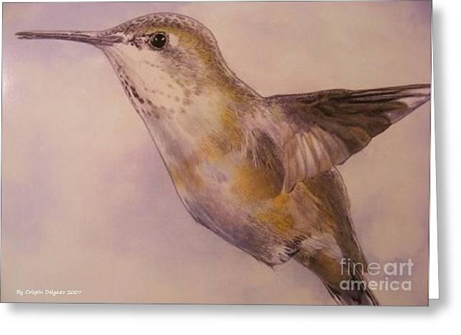 Hummingbird Greeting Card by Crispin  Delgado