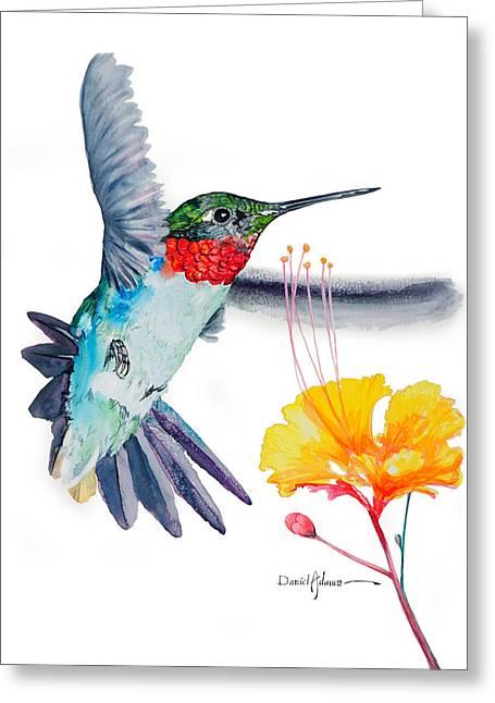 Da169 Hummingbird Flittering Daniel Adams Greeting Card
