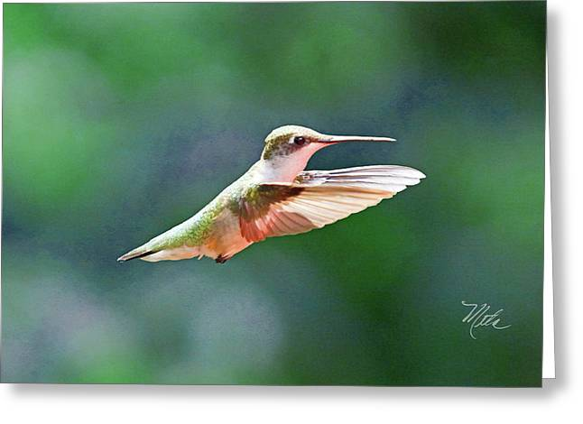 Greeting Card featuring the photograph Hummingbird Flying by Meta Gatschenberger