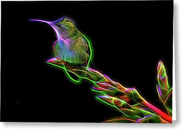 Hummingbird Glow Greeting Card
