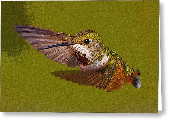 Rufus Greeting Cards - Hummingbird In Flight- Abstract Greeting Card by Tim Grams