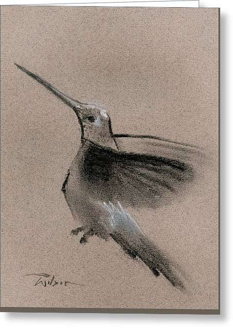 Fine Art Charcoal Rendering Of A Hummingbird In Flight. Greeting Card by Ron Wilson