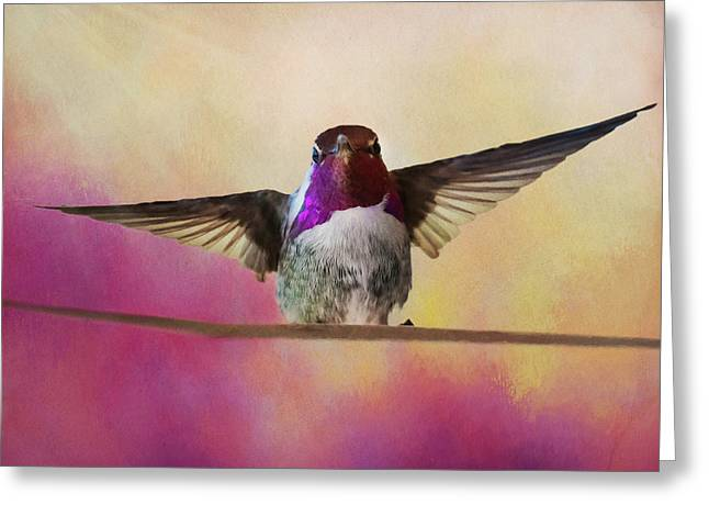 Hummingbird On A Wire Greeting Card