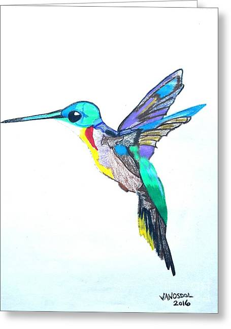 Hummingbird Presented In Colored Pencil Greeting Card