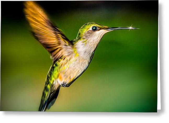 Hummingbird Sparkle Greeting Card