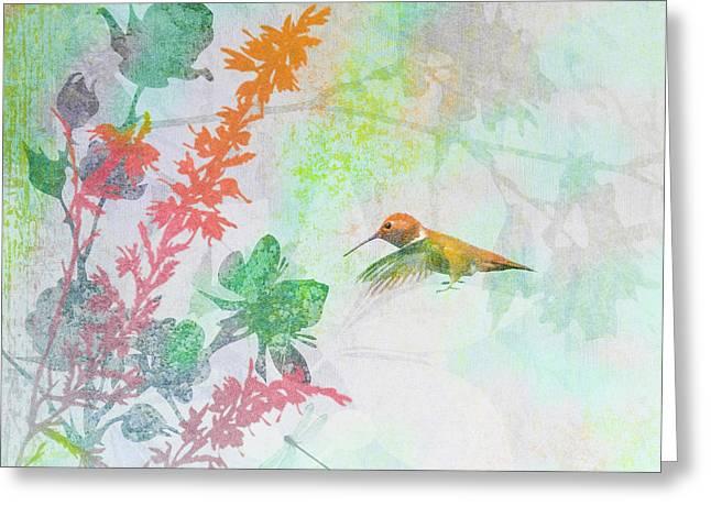 Hummingbird Summer Greeting Card