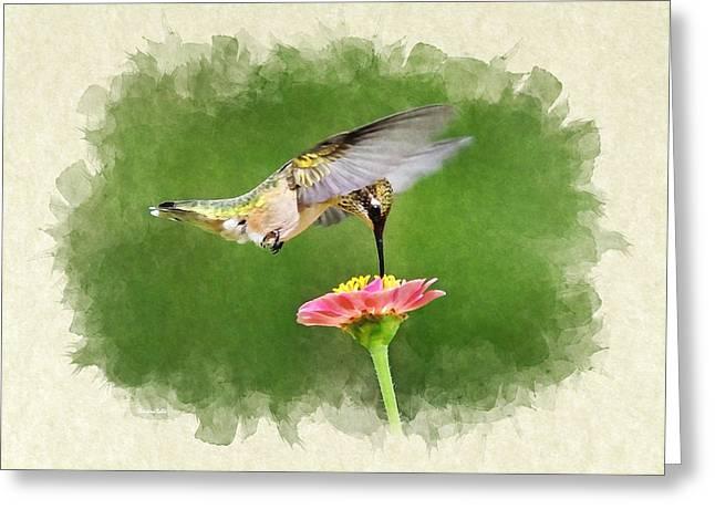Hummingbird Sun Sweet Blank Note Card Greeting Card