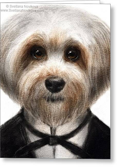 Humorous Dressed Dog Painting By Greeting Card
