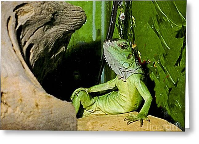 Humorous Greeting Cards Greeting Cards - Humorous Pet Iguana Photo Greeting Card by Carol F Austin