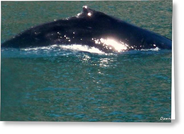 Humpback Hannah Greeting Card by Dawna Raven Sky
