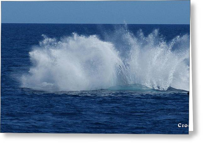 Humpback Whale Breaching Close To Boat 23 Image 3 Of 4 Greeting Card